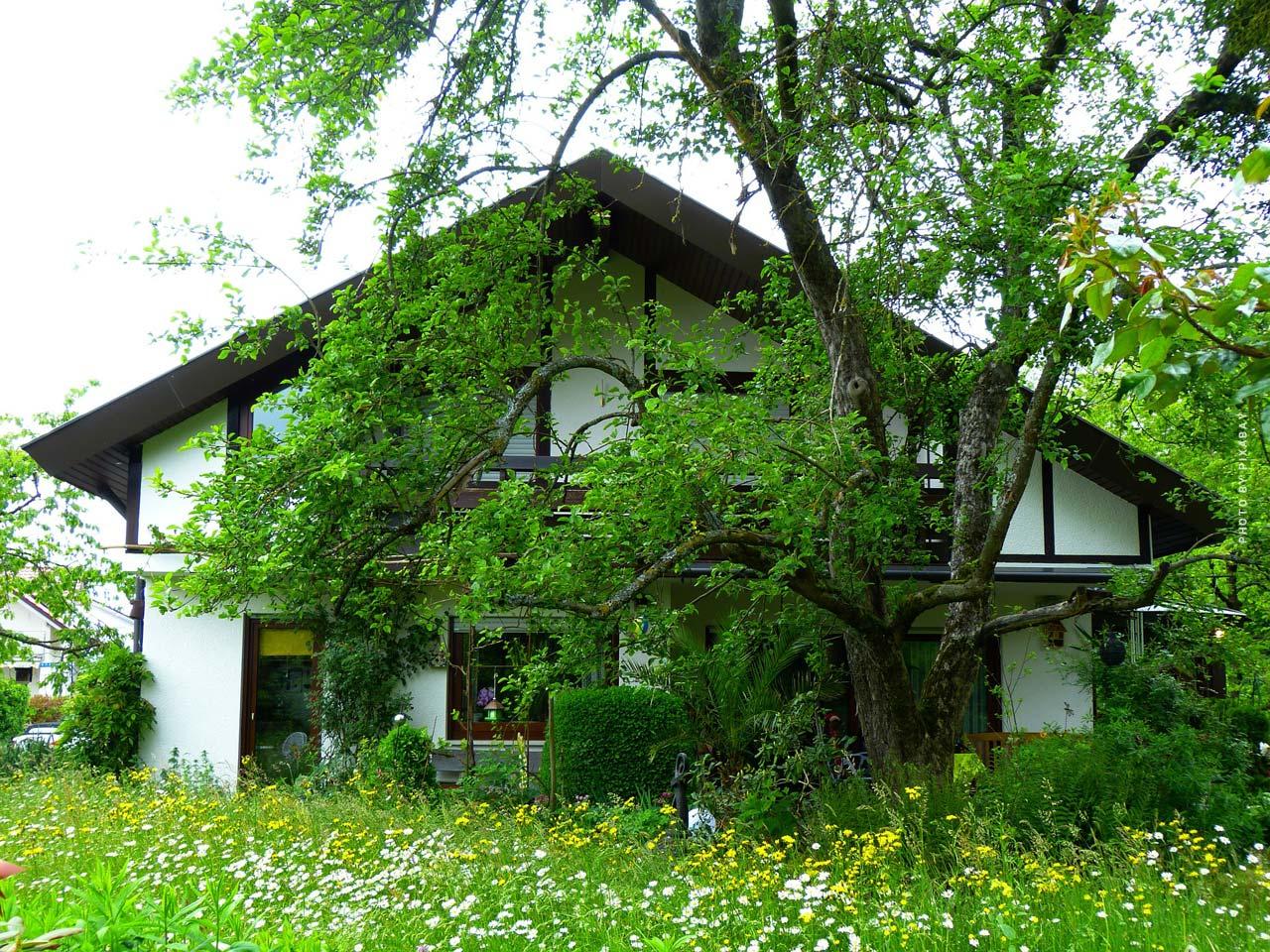 Wohnungsmarkt in Nettetal: Kapitalanlage, Planen, Verkaufen und Wohnung