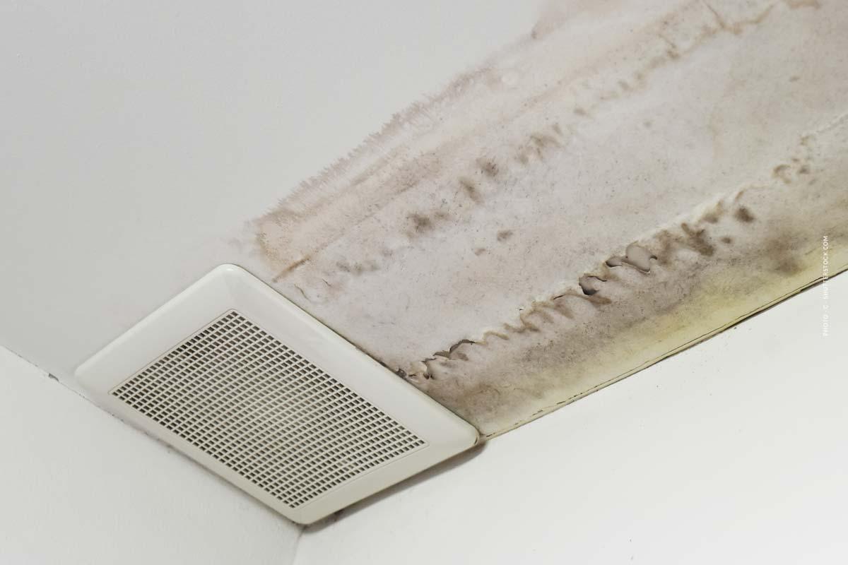 Wand feucht? So prüfen Sie Feuchtigkeit in Wänden richtig
